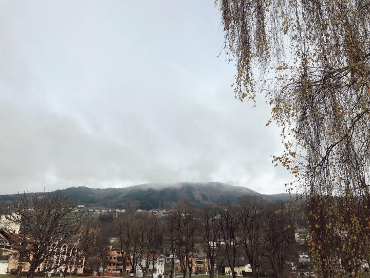Austrian views.JPG