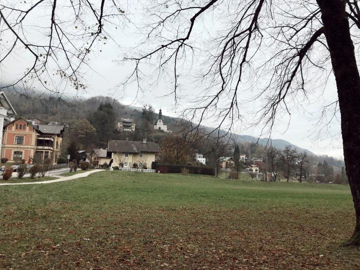 Salzburg field.JPG
